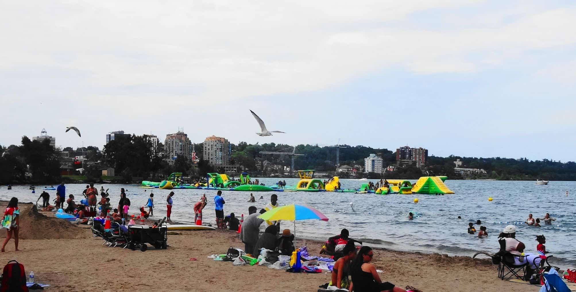 Beach plus Gull
